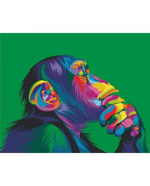 T40500018 Rainbow Monkey