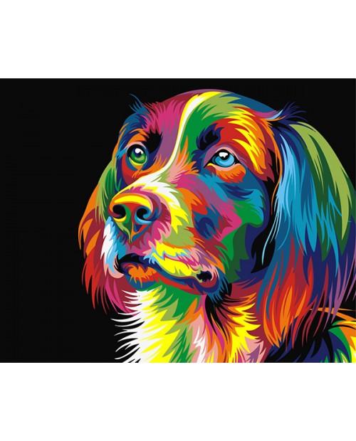 T40500006 Rainbow Dog