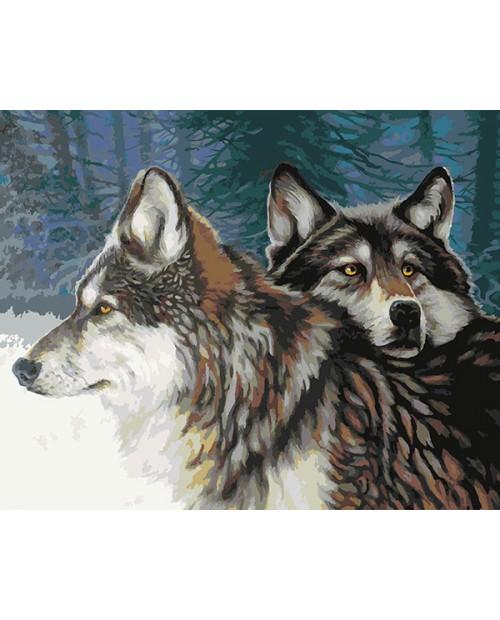 T40500033 Взгляд Волчицы