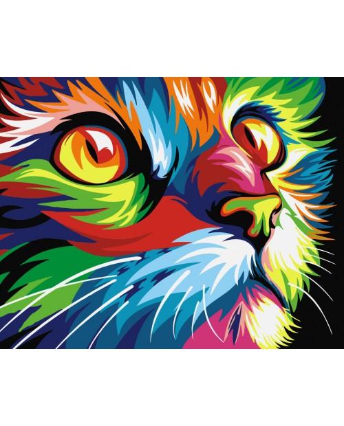 T16130008 Rainbow Cat