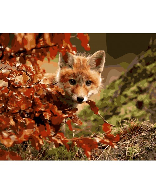 H005 Sly Fox