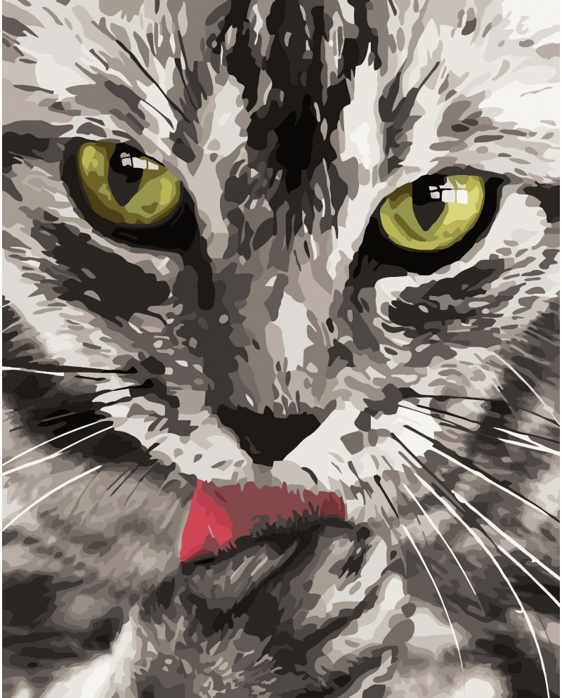 H031 Кот