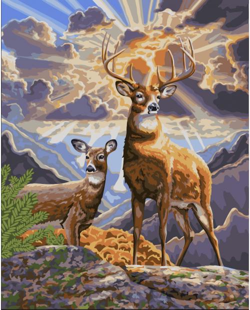 H062 Northern Deer