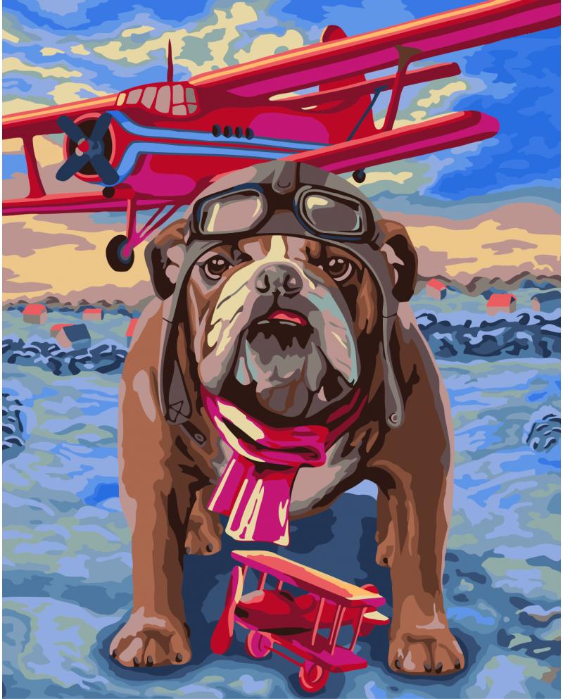 H064 Pilot