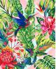 H068 Hummingbird
