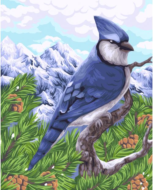 H106 Blue Jay
