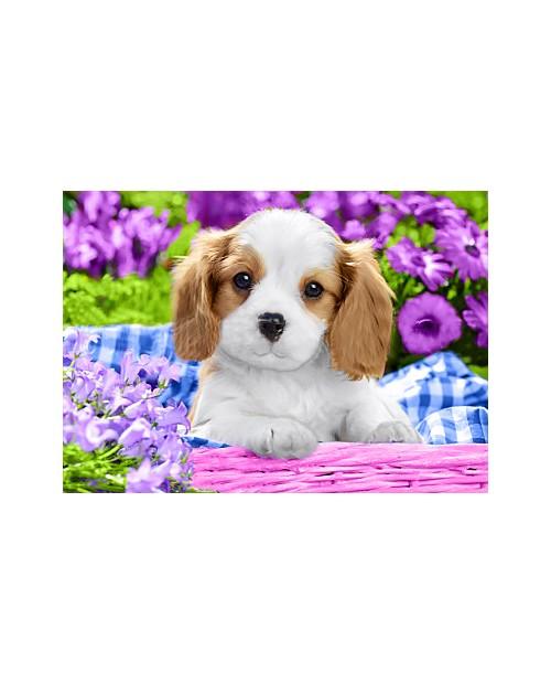 Пес в Фиолетовых Цветах WD2451