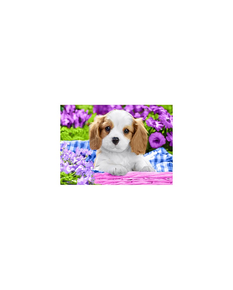 Dog in Purple Flowers WD2451
