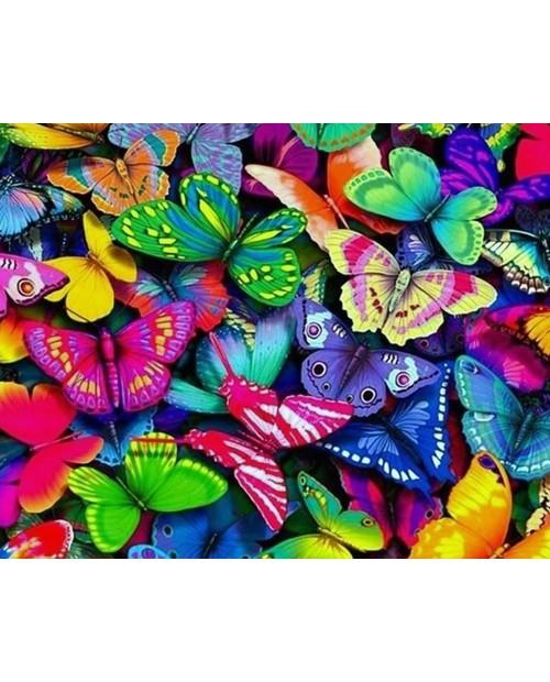Разноцветные Бабочки WD057