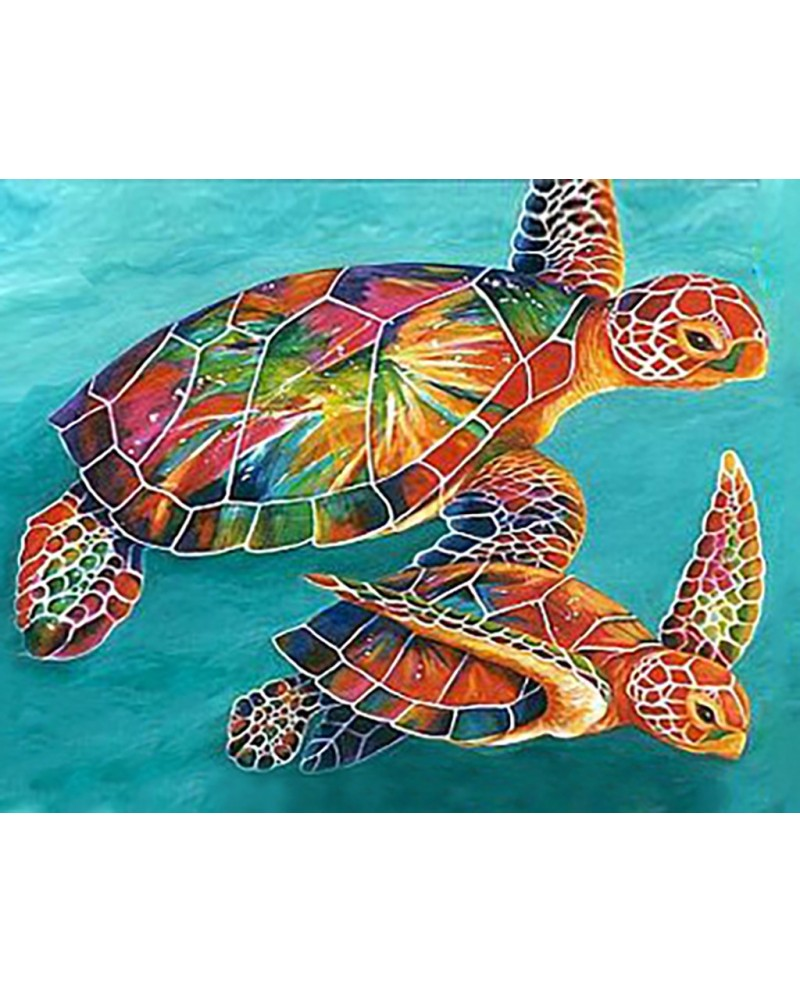 Sea Turtles WD064