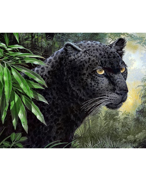 Panther WD072