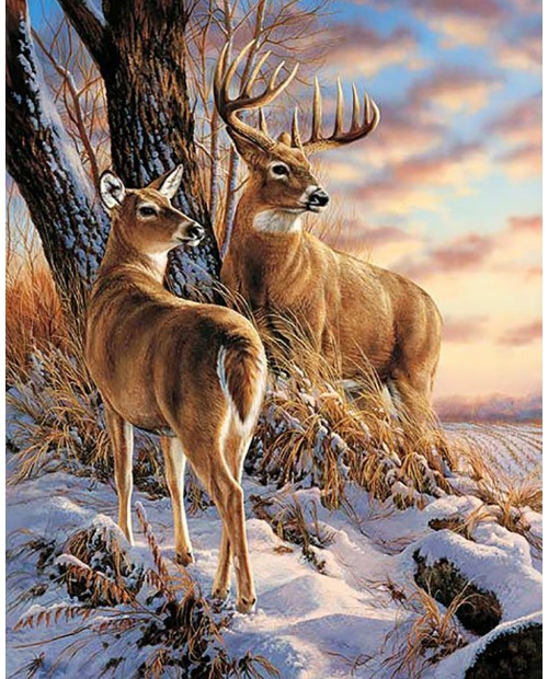 Deer in Winter WD085